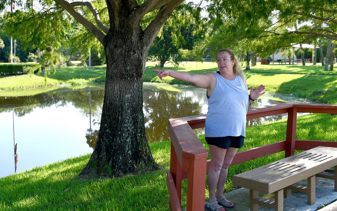 VIM Fit Fest Week 06 at Smith Turner Park – Yoga with Joanie
